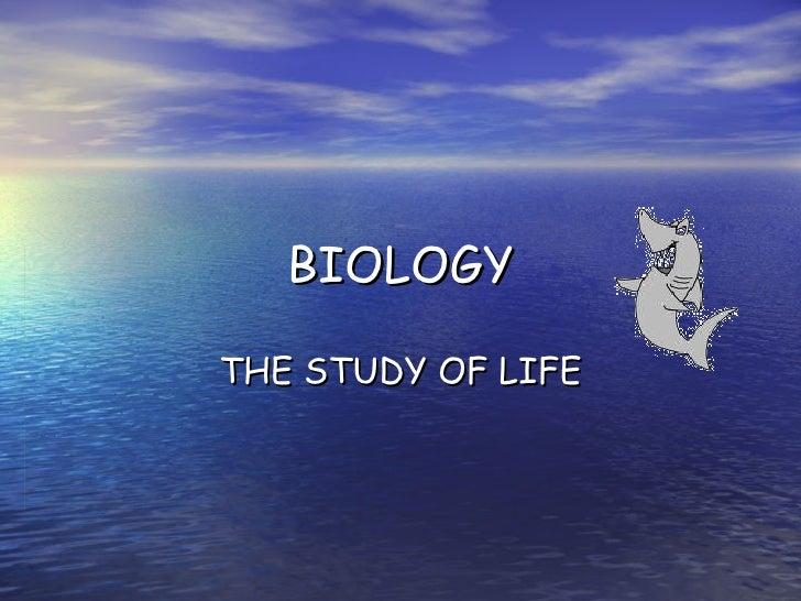 Intro Bio Notes