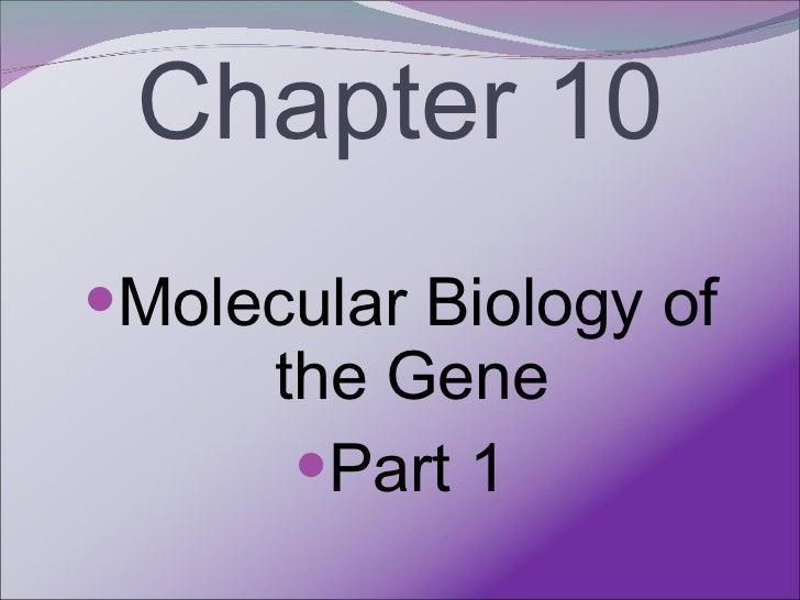 Chapter 10 <ul><li>Molecular Biology of the Gene </li></ul><ul><li>Part 1 </li></ul>