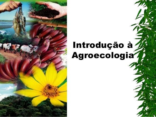 Introdução à Agroecologia