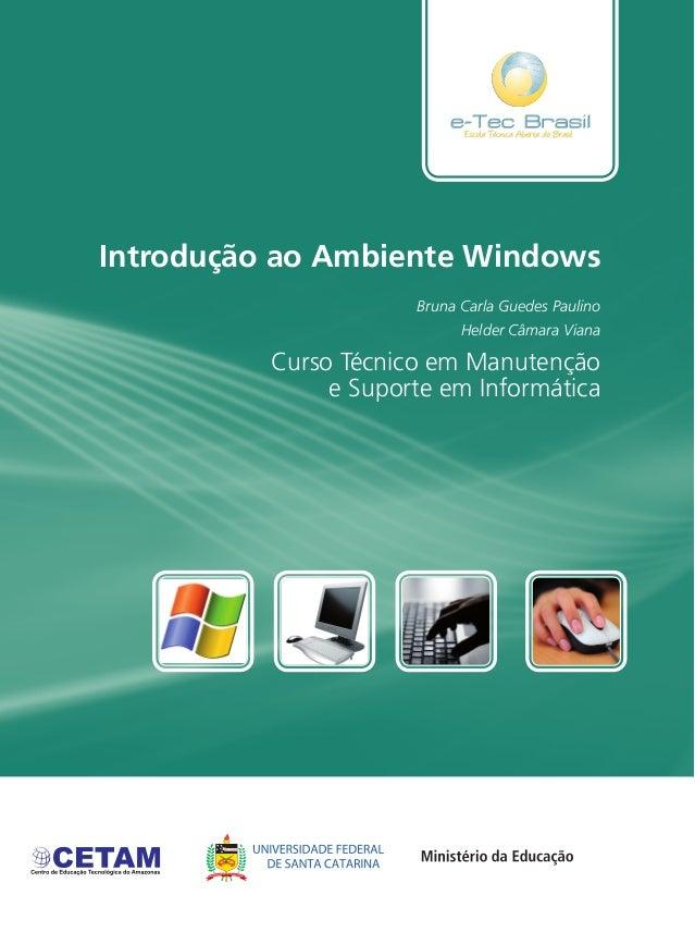 Introdução ao Ambiente Windows Curso Técnico em Manutenção e Suporte em Informática Bruna Carla Guedes Paulino Helder Câma...
