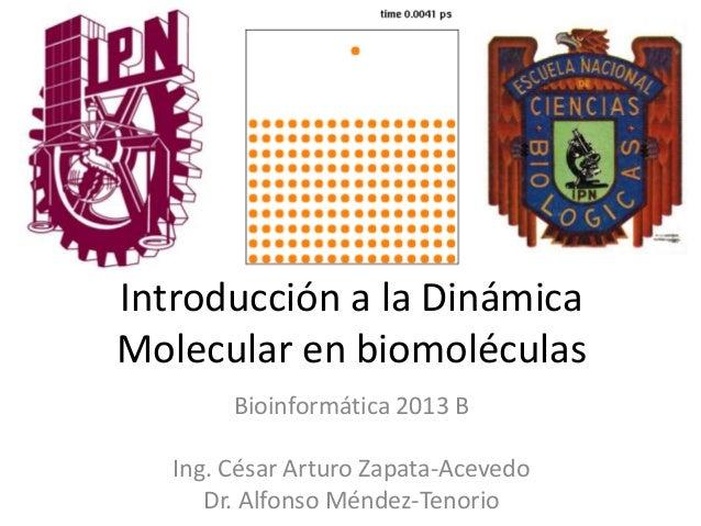 Introducción a la Dinámica Molecular en biomoléculas Bioinformática 2013 B Ing. César Arturo Zapata-Acevedo Dr. Alfonso Mé...