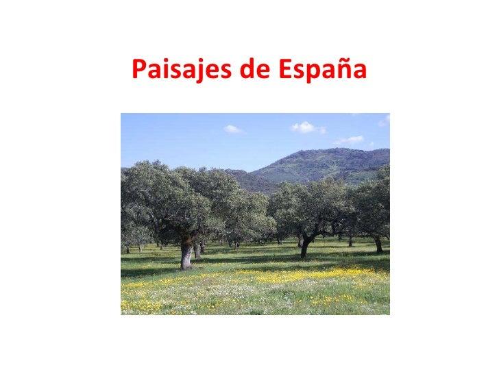 Introducción al paisaje