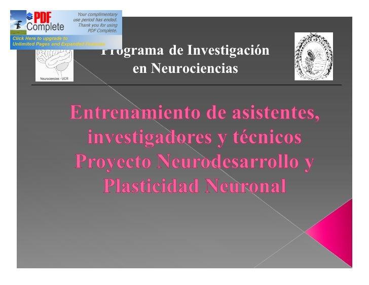 Introducción Proyecto Neuroplasticidady Neurodesarrollo