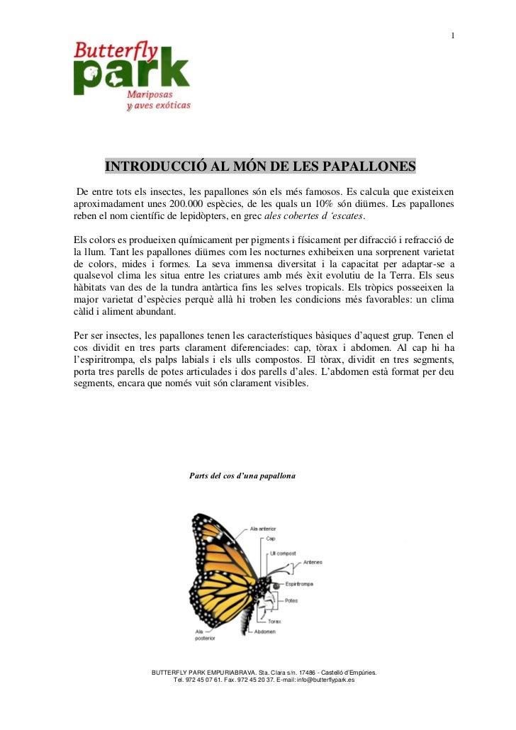 1       INTRODUCCIÓ AL MÓN DE LES PAPALLONES De entre tots els insectes, les papallones són els més famosos. Es calcula qu...