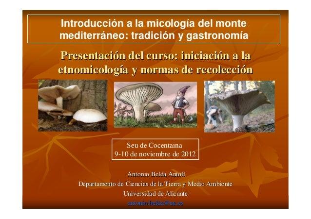 Introducción a la micología del montemediterráneo: tradición y gastronomíaPresentación del curso: iniciación a laetnomicol...