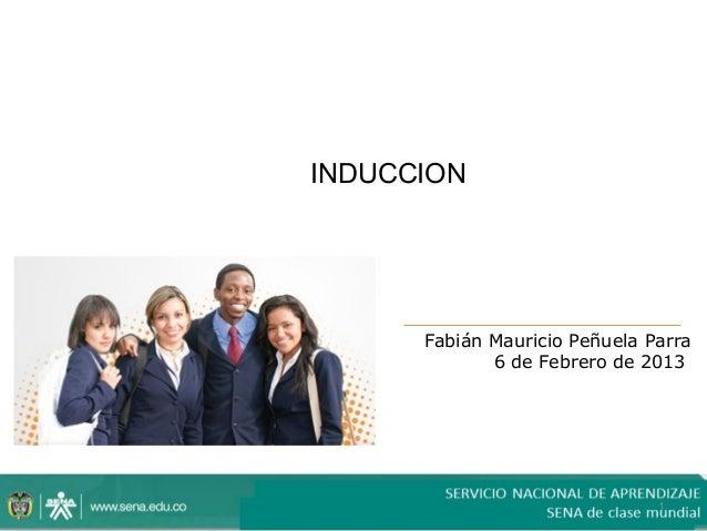 INDUCCION      Fabián Mauricio Peñuela Parra             6 de Febrero de 2013                               1
