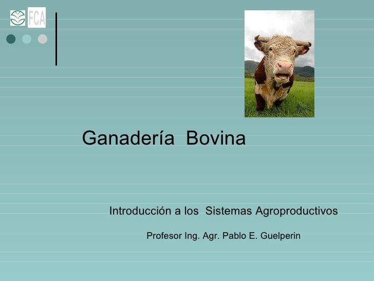 Ganadería  Bovina Introducción a los  Sistemas Agroproductivos Profesor Ing. Agr. Pablo E. Guelperin