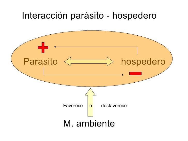 Los parásitos de la persona la enfermedad
