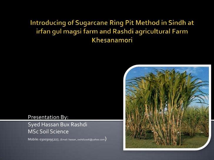 Introducing Of Sugarcane Ring Pit Method In Sindh