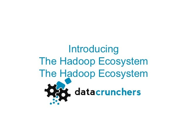 Introducing the hadoop ecosystem
