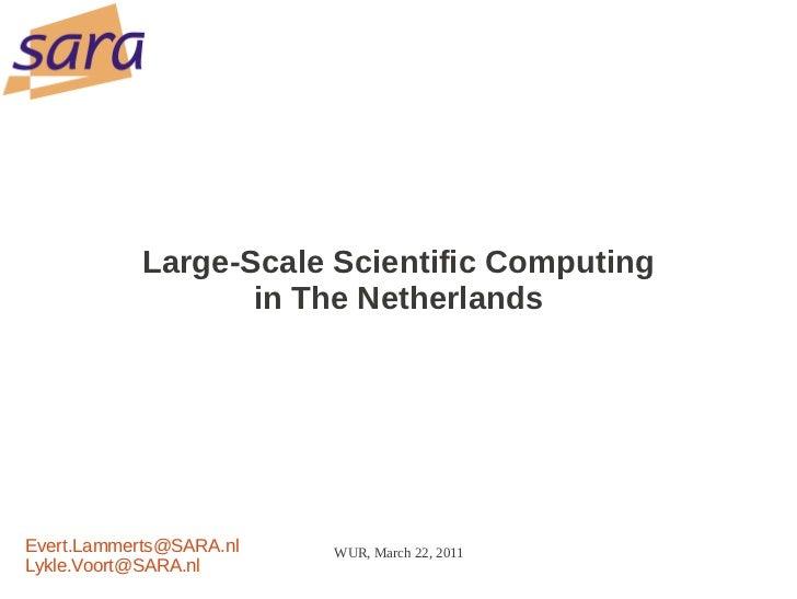 Scientific computing in The Netherlands