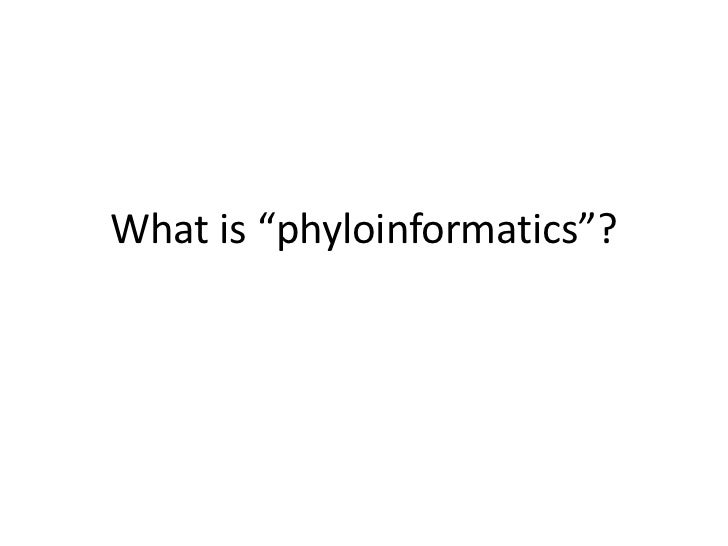 "What is ""phyloinformatics""?"