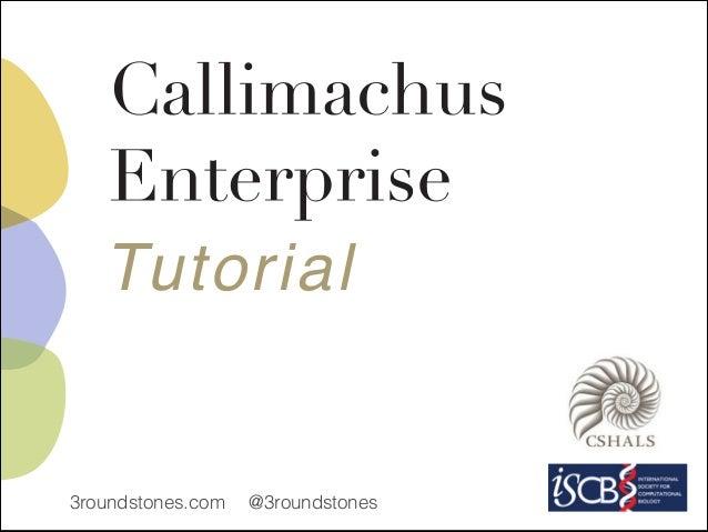 Callimachus Enterprise 1.3 Tutorial