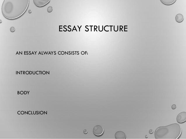 Pro Immigration Essay