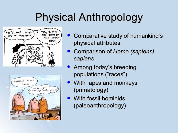 physical anthropology vs cultural anthropology Biocultural theory, related to the anthropological value of holism, is an integration of both biological anthropology and social/cultural anthropology.