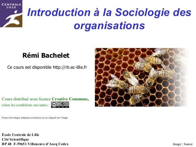 Rémi BACHELET– Ecole Centrale de Lille 1Utilisation ou copie interdites sans citation Introduction à la Sociologie des org...