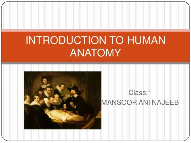 Class:1 MANSOOR ANI NAJEEB INTRODUCTION TO HUMAN ANATOMY