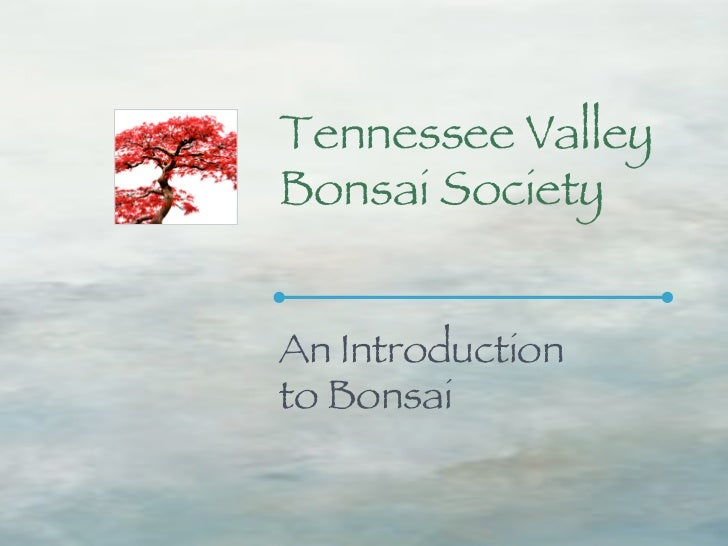 Tennessee ValleyBonsai SocietyAn Introductionto Bonsai