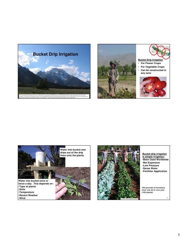 India;  Bucket Drip Irrigation - Chapin Living Waters