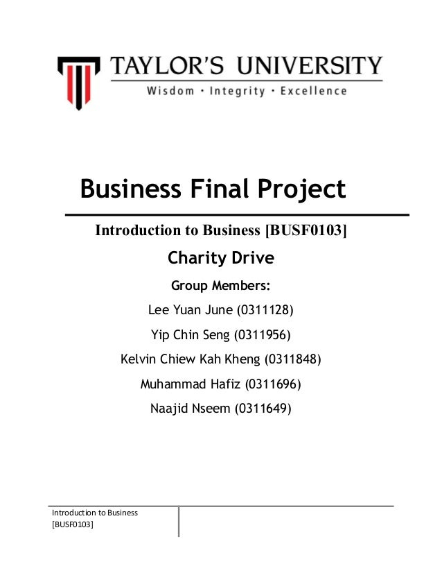 Introduction to business   final project (final report)