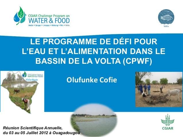 LE PROGRAMME DE DÉFI POUR L'EAU ET L'ALIMENTATION DANS LE BASSIN DE LA VOLTA (CPWF) Olufunke Cofie  Réunion Scientifique A...