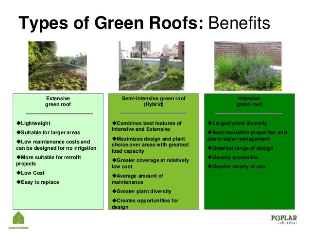 Introduction To Green Roofs