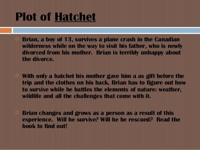Hatchet Essay