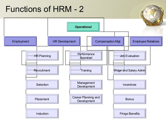 hr planing functionsin the introduction stage Encyclopedia of business, 2nd ed management functions: log-mar toggle navigation  the management functions of planning, organizing, leading,.
