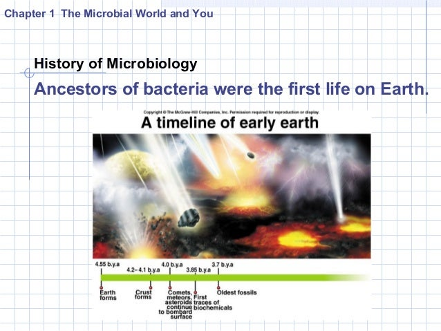 introduction to the microbial world history Introduction to the microbial world has 4 ratings and 0 reviews: published by prentice hall, 468 pages, hardcover.