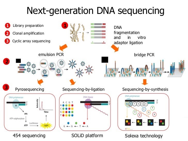 next generation sequencing for dummies