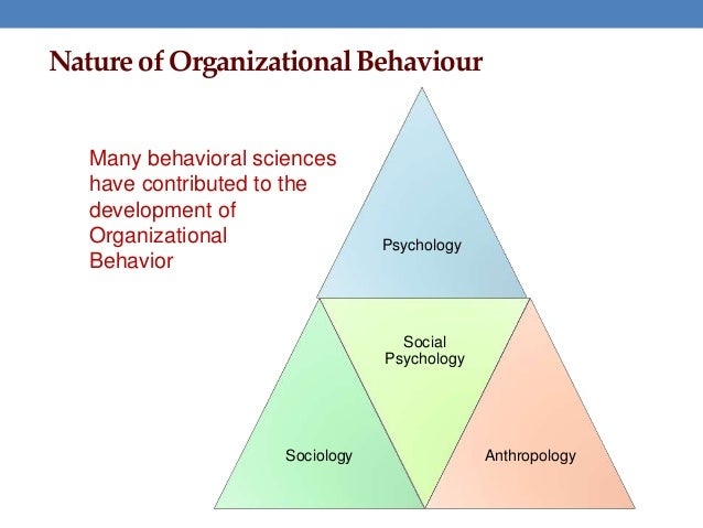 contribution of organizational behavior
