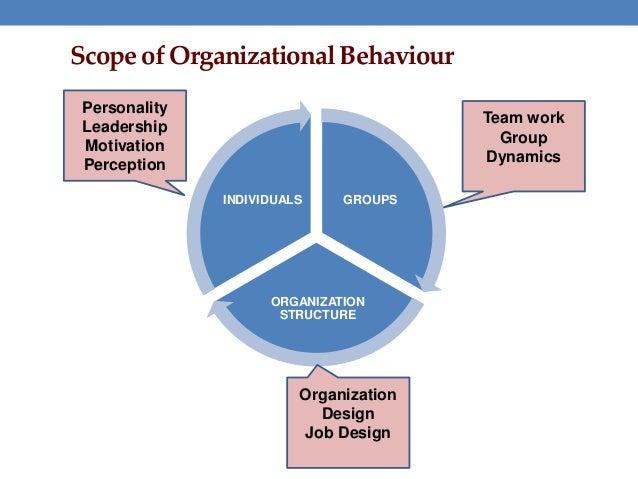 Organizational behavior paper