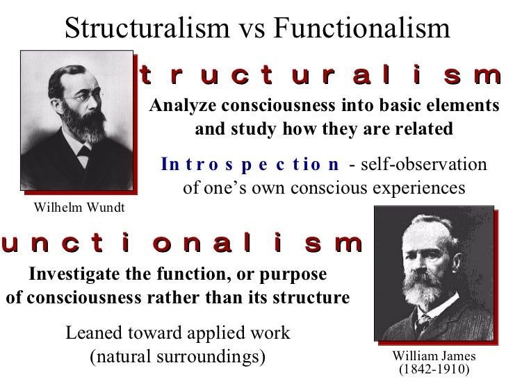 structural functionalism essay Essay title: structural functionalism functionalism is referred to as consensus structuralism because it emphasises the central role that agreement between members of a society on morals plays.