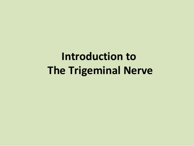 Introduction to the trigeminal nerve ‫‬dental surgery