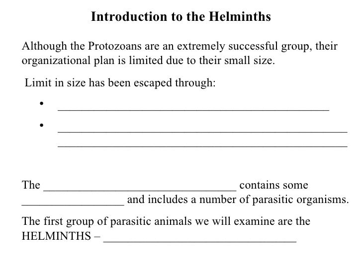 Introduction to the Helminths <ul><li>Although the Protozoans are an extremely successful group, their organizational plan...
