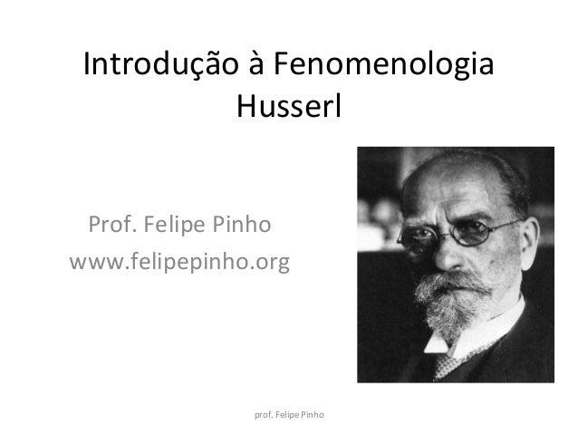 Introdução à fenomenologia