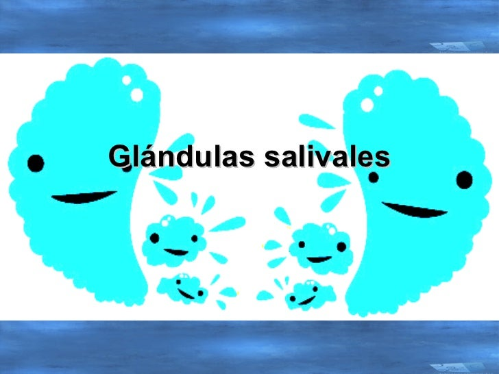 Introduccion a las glandulas salivales