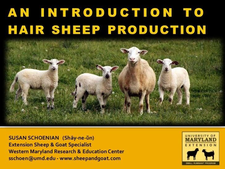 SUSAN SCHOENIAN (Shāy-ne-ŭn)Extension Sheep & Goat SpecialistWestern Maryland Research & Education Centersschoen@umd.edu -...