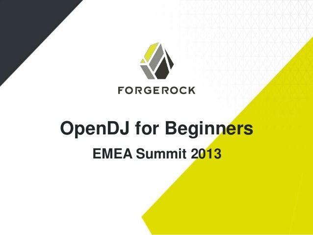 OpenDJ for Beginners EMEA Summit 2013