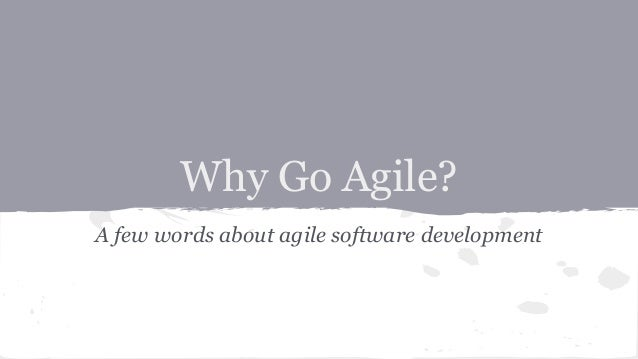 Why Go Agile? A few words about agile software development