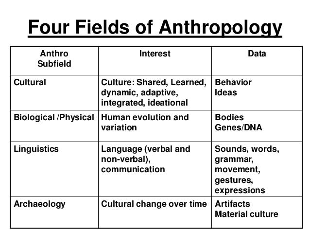 4 main subfields of anthropology essay Comparison of the social sciences: anthropology, psychology, and sociology essay - sociology  sociology buy best quality custom written comparison of the social sciences: anthropology, psychology, and sociology essay live 24/7  is a holistic science that aims to provide the means to understanding the world it is divided into four main.