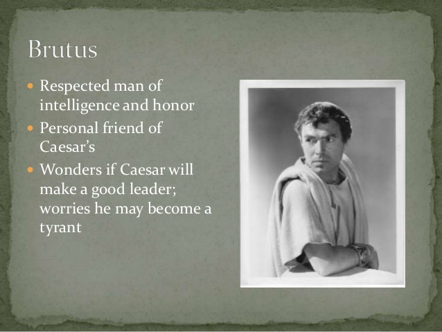 julius caesar essay about brutus Writing sample of essay on a given topic character analysis of julius caesar.
