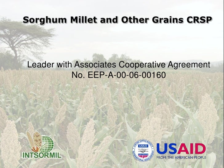 Sorghum Millet and Other Grains CRSP<br />Leader with Associates Cooperative Agreement<br />No. EEP-A-00-06-00160<br />