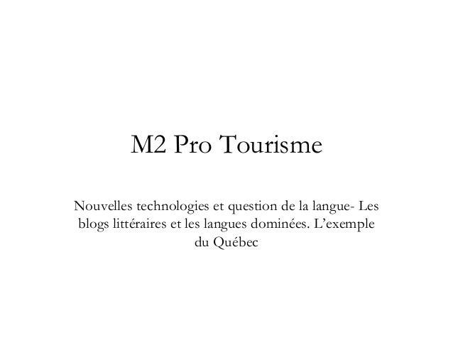 M2 Pro Tourisme Nouvelles technologies et question de la langue- Les blogs littéraires et les langues dominées. L'exemple ...