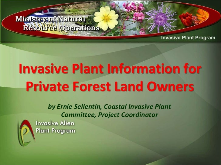 Invasive Plant Information for Private Forest Land Owners    by Ernie Sellentin, Coastal Invasive Plant        Committee, ...