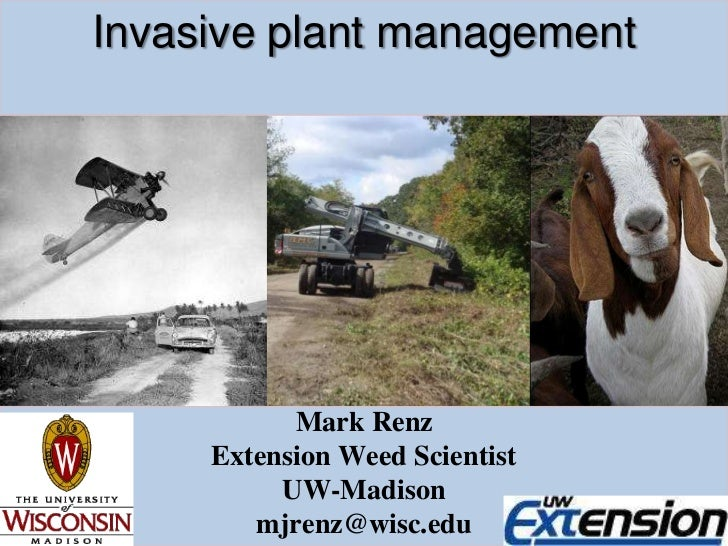 Invasive plant management<br />Mark Renz<br />Extension Weed Scientist<br />UW-Madison<br />mjrenz@wisc.edu<br />