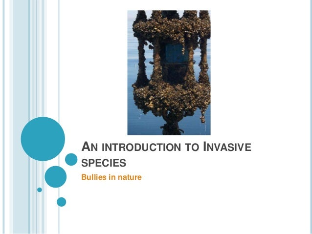 AN INTRODUCTION TO INVASIVE SPECIES Bullies in nature
