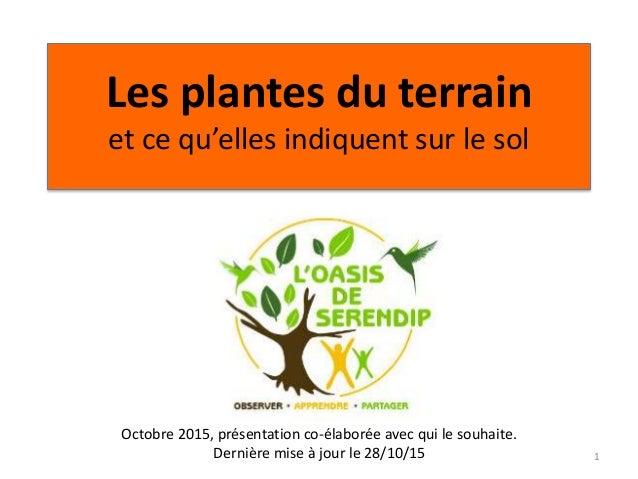 Les plantes du terrain et ce qu'elles indiquent sur le sol 1 Octobre 2015, présentation co-élaborée avec qui le souhaite. ...