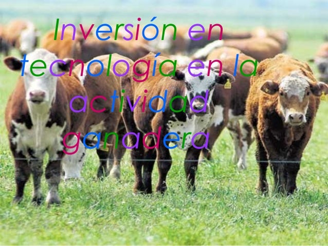 Inversión entecnología en la   actividad   ganadera