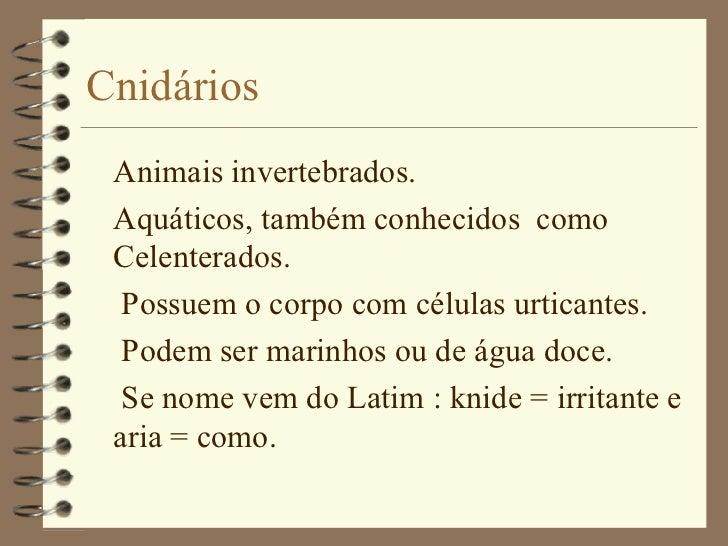 Cnidários <ul><li>Animais invertebrados. </li></ul><ul><li>Aquáticos, também conhecidos  como Celenterados. </li></ul><ul>...